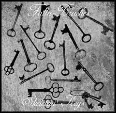 Skeleton_Keys_Brushes_by_Falln_Stock