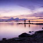The Beauty Of Purple Color Photography