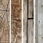 250 High Resolution Free Wood Textures For Web Designers