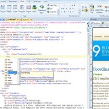 Giveaway : Single License Key Of Professional Web Architect 9