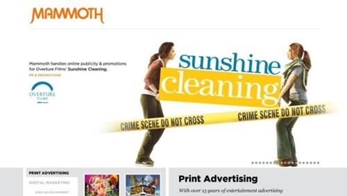 flash website design