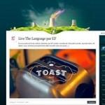 30 Well Designed Custom WordPress Themes