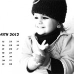Desktop Wallpaper Calendar : January 2012