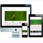 30+ Best Responsive WordPress Themes For Free Download