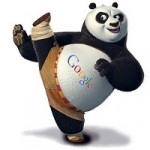 When Will Be The Next Google Panda Update?