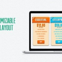 10 CSS3 Pricing Tables For Professional Websites