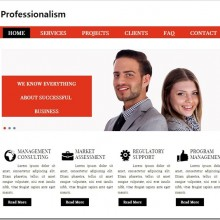 Best Deals : 9 Professional Responsive Website Templates For $5