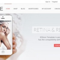 70 Modern WordPress Ecommerce Themes