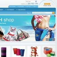 60 Best Free Magento Themes : 2013 Edition