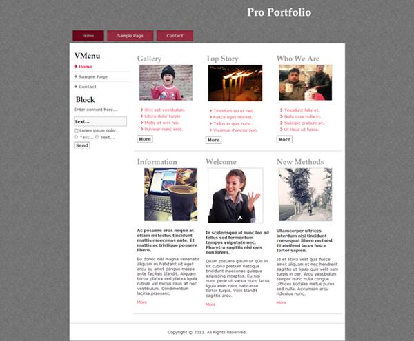 pro-portfolio