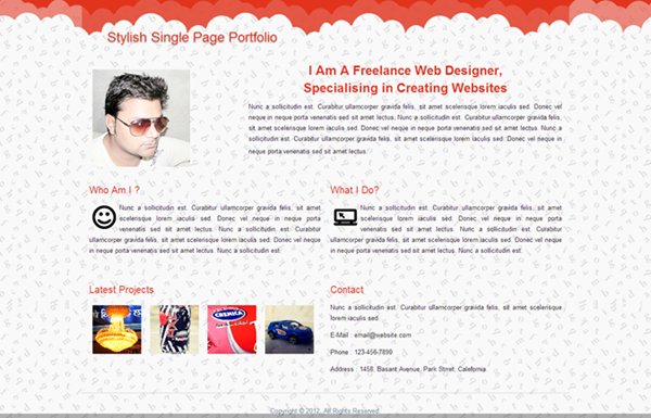 stylish-single-page-portfolio (1)