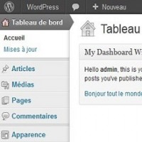 How To Create WordPress Widgets : 5 Best Tutorials