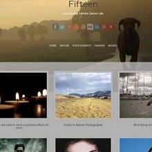 100 Best Free WordPress Themes From 2014